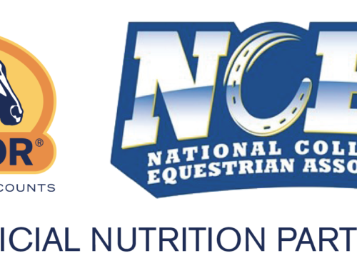 NCEA Adds Cavalor as Official Nutrition Partner