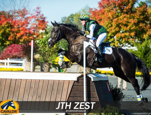 Christina Henriksen's JTH Zest