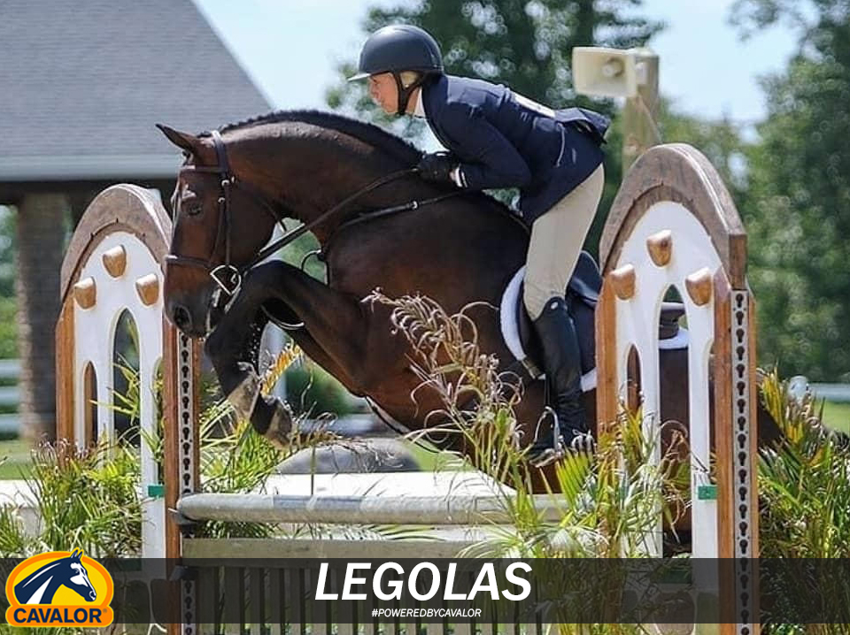 Friday Spotlight with the beautiful and regal Legolas! How ...