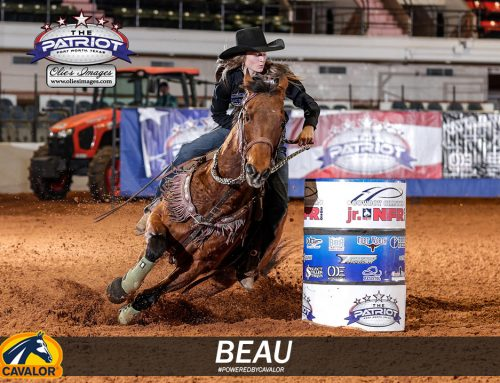 Beau and Mesa Wrangling the Week in for This Friday's Spotlight!