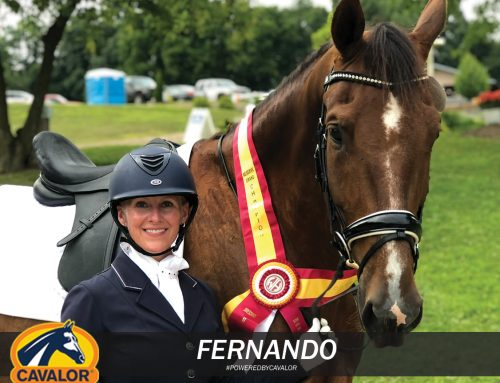 Performix for Daily Boosts of Energy Helps This Dressage Star